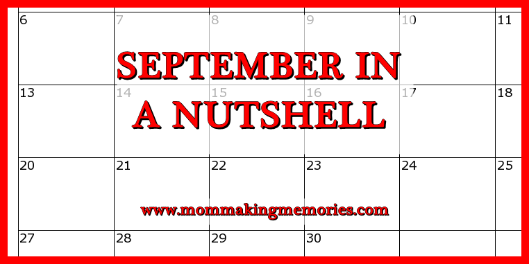 Blog sept in a nutshell facebook