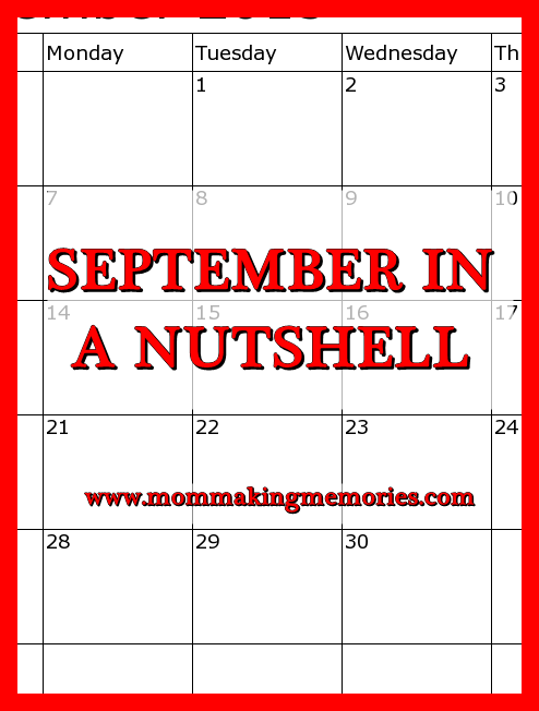 Blog sept in a nutshell pinterest