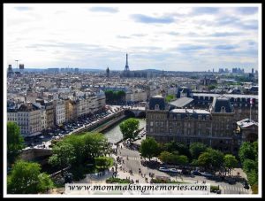 View of Eiffel Tower from Notre Dame. www.mommakingmemories.com